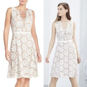 Adrianna Papell Illusion Floral Lace Fit &Flare 16